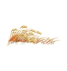 A field of reeds vector