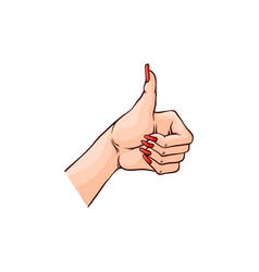 female hand with thumbs up vector image