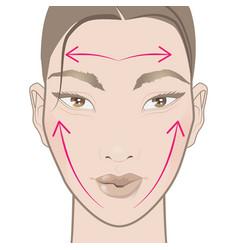 How to apply face cream vector