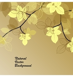 Natural background with yellow leaves vector