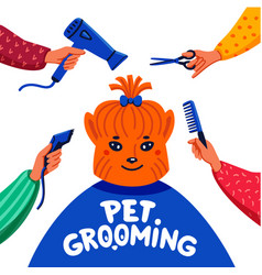 Pet grooming concept happy lap-dog and hands with vector