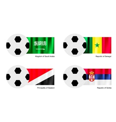 Soccer Ball of Saudi Arabia Senegal Sealand vector image