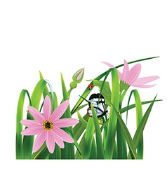 Grass with pink flowers vector