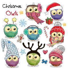 set of christmas owls on a white background vector image vector image