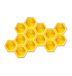 organic raw honey healthy food production vector image vector image