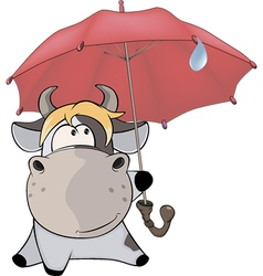 A small cow and an umbrella Cartoon vector image