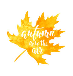 Autumn is in the air on yellow watercolor maple vector