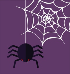 Halloween decoration spider and cobweb vector image