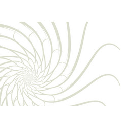 simple lines background abstract white trendy vector image