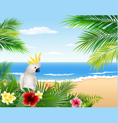 tropical beach cards plants and parrots vector image
