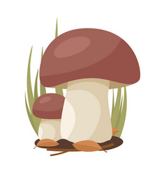 Two white mushrooms grow on a background grass vector