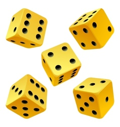 Yellow dice set vector image