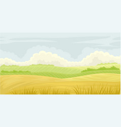 beautiful nature landscape meadow on a cloudy vector image