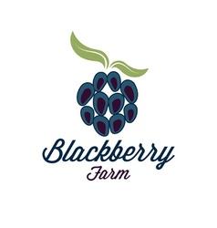 blackberry farm vector image