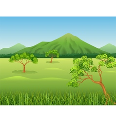 Cartoon of Beautiful jungle background vector