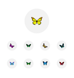 set of moth realistic symbols with agrias claudina vector image