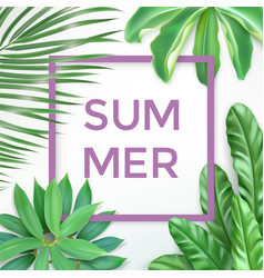 summer typography with exotic leaves and frame vector image