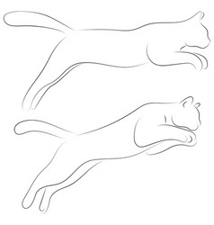 two cats in sketch style set of black line cats vector image