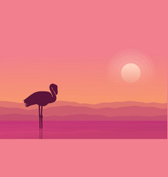 at sunrise flamingo scene silhouettes vector image