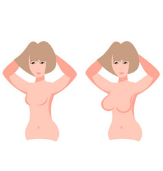 big boobs and small breasts vector image