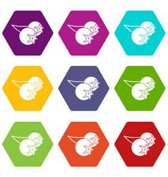 Chokeberry or aronia berry icon set color vector