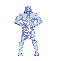 Hercules holding bottle with octopus inside vector