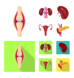 isolated object of biology and scientific icon vector image