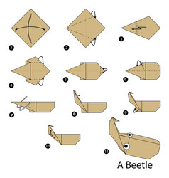 Step instructions how to make origami a beetle vector