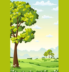 summer landscape with trees vector image