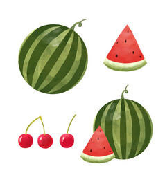 Watercolor watermelon set vector