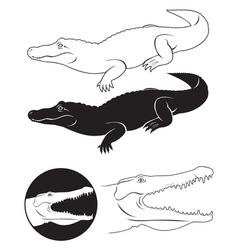alligator vector image vector image