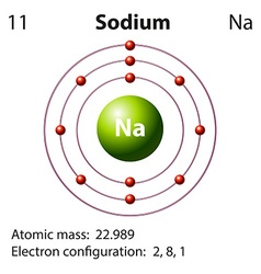 Diagram representation of the element sodium vector image