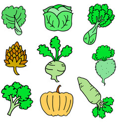 doodle of fresh vegetable various vector image vector image