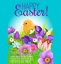easter greeting poster of chick and flowers vector image vector image
