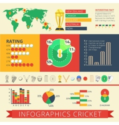 Infographics report cricket poster vector image