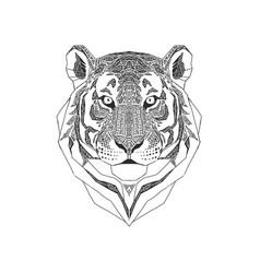 tiger head isolated on white background wild vector image