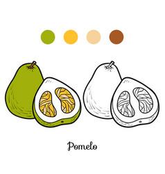 Coloring book pomelo vector