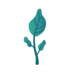 fantasy turquoise gradient vector image