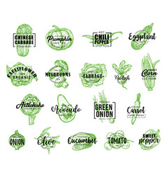farm vegetables icons with lettering vector image