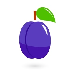 fruit icon with isolated plum vector image