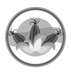Organic food emblem icon image vector