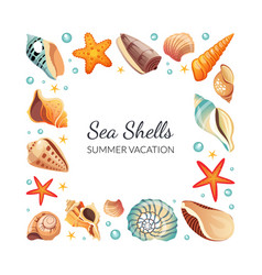 sea shells square frame seashells border template vector image