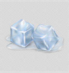 Two melting ice cubes on transparent background vector