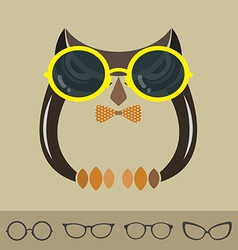images of owl and glasses vector image vector image