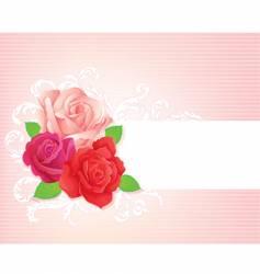 rose banner vector image
