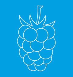blackberry icon outline style vector image vector image