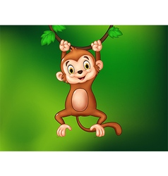 Cartoon funny monkey hanging on a vine vector
