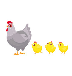 Chicks following chicken spring easter chickens vector