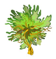 green cartoon algae isolated on white background vector image
