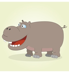 Hippo vector image